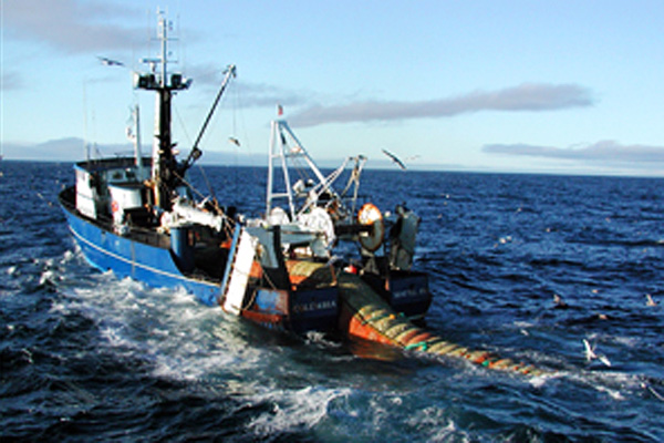 漁 の ベーリング 海 カニ
